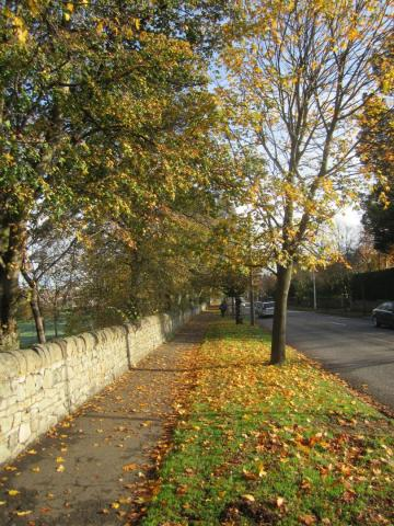 Footpath in the Murrayfield area
